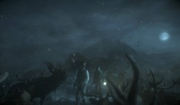 until dawn deer